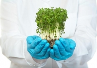 Najnowsze żywnościowe start-upy, czyli biznes na jedzeniu