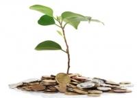 Rosną zyski małych i średnich firm