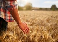 Część rolników zapłaci ZUS